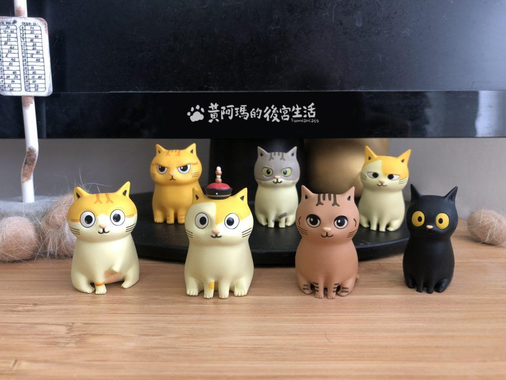 貓奴們注意!貓界皇上——黃阿瑪與後宮們,被關進扭蛋裡了!