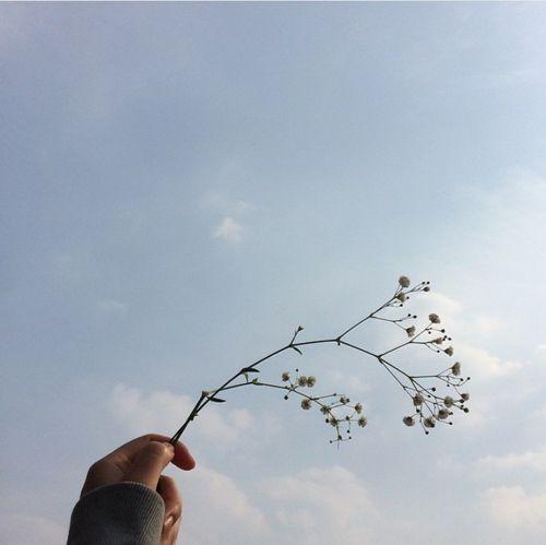 【邱比特連載】跟他失戀了卻讓我找回那時候跟你失溫的記憶。