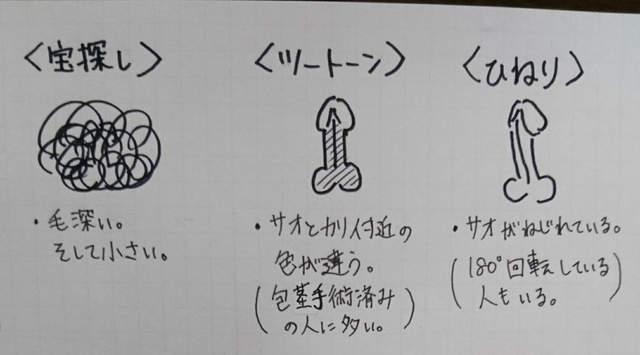 手繪專業「雞雞圖鑑」!各種不同形狀特徵與命名的GG,你看過幾個呢?