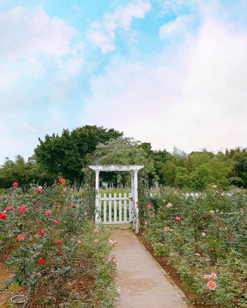 桃園玩什麼?3+3自然景點推薦!加贈歐式玫瑰園 X 中國風茶樓