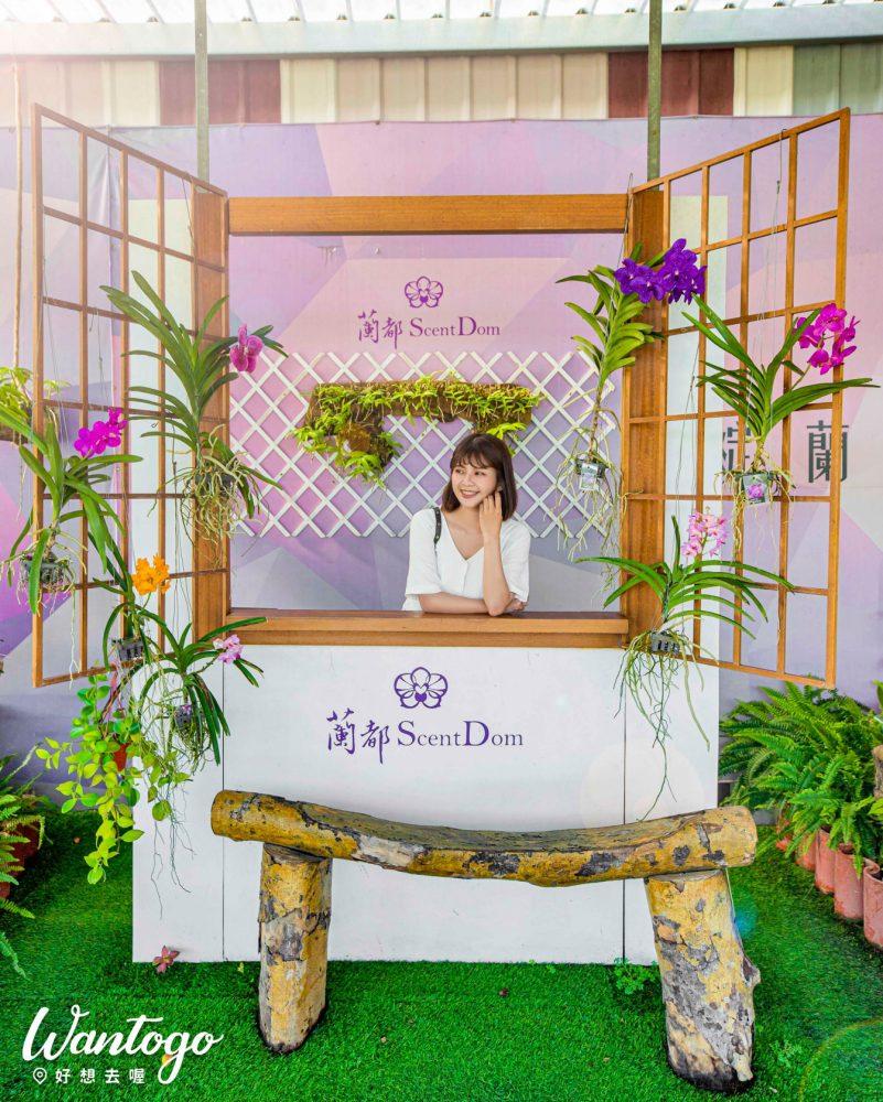 【台南】免費浪漫這裡找!隱藏版約會秘境在這裡,繽紛蝴蝶蘭、LOVE裝置、純白遊艇、DIY,換種方式玩台南太有趣!