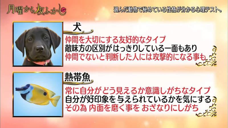 【心理測驗】日本超準「第一眼看見的動物」測性格