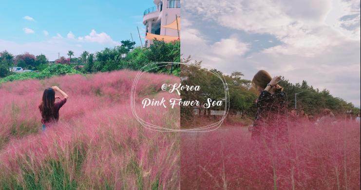 姊妹們耍美囉!!韓國這3個地方擁有超美「粉紅色花海」絕對要去拍爆相機記憶體啦~