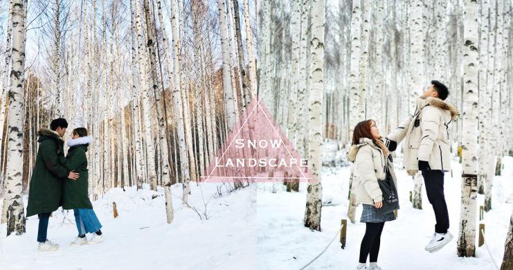 盤點2018韓國必去雪景地,「白色版忘憂森林」隨便拍都給我美得像童話啊!