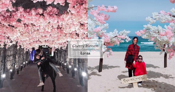 走一趟「櫻花海邊」與「櫻花隧道」,保證今年桃花開不停!不管是照片還是戀情都走花路吧~