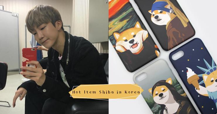 自從有了牠們,就再也沒正眼瞧過萊恩一眼!韓國最新伴手禮「西巴」送禮自用兩相宜